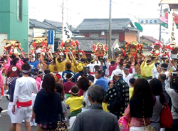 It raise all at once seven mikoshi.